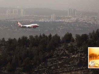 شركات طيران تحظر سفر مواطني دول مسلمة لأميركا | مهاجر