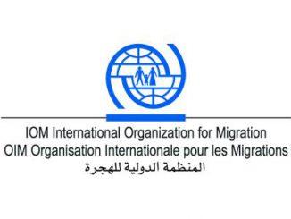 وزارة الداخلية ومنظمة الهجرة تنظمان دورات تدريبية على إجراءات فحص الجوازات | مهاجر