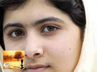 ملالا يوسفزاي ستحضر لاستلام الجنسية الكندية الفخرية يوم 12 أبريل | مهاجر