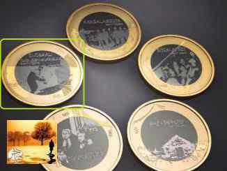 فنلندا: سك صورة الفتى السوري أيلان كردي على قطعة نقدية تخليدا لذكراه | مهاجر