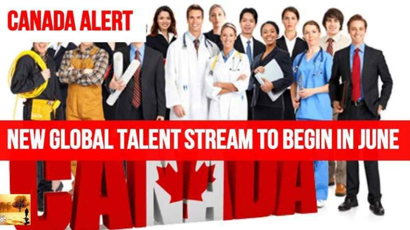 New Visa To Canada: Global Talent Stream Releases Occupations List and Further Details