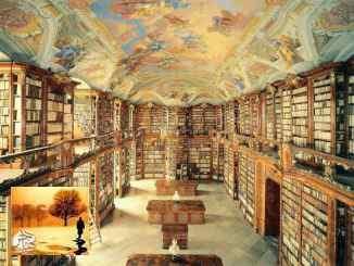 المتاحف والمكتبات في ألمانيا: مكتبة لكل 9,000 شخص ومتحف لكل 12,500 | مهاجر
