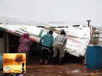 أغلب اللاجئين السوريين في لبنان يعيشون تحت خط الفقر | مهاجر