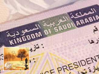 السعودية تستحدث تأشيرة «زيارة فعالية» | مهاجر