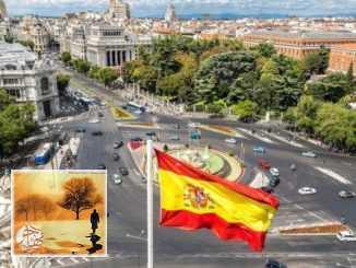خدمة التطوع الأوروبية تفتح الباب للسفر لاسبانيا | مهاجر