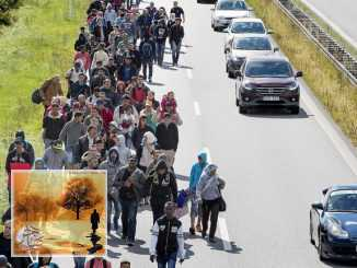 بعد مراجعة الوضع الأمني.. السويد تغير سياستها إزاء اللاجئين السوريين | مهاجر