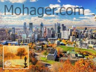 أفضل 10 أشياء يمكنك القيام بها في زيارتك الأولى إلى مونتريال | مهاجر