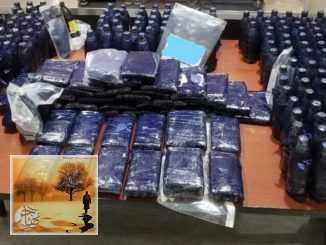 ضبط مخدرات بقيمة 1.6 مليون دولار ضمن حقيبة طفل في مطار بيرسون | مهاجر