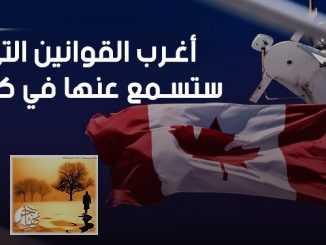 أغرب القوانين واللوائح في كندا.. قد تنتهكها وأنت لا تدري! | مهاجر