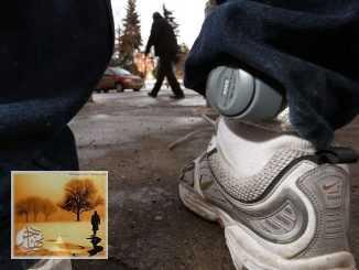 حل لإيقاف العنف المنزلي في كيبيك يتمثل في ارتداء الرجال سوار مراقبة إلكتروني   مهاجر