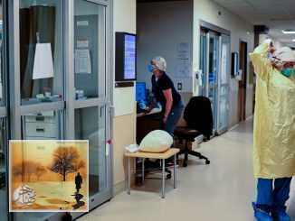كورونا يصيب تسعة أفراد من عائلة واحدة في أونتاريو | مهاجر