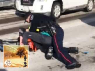 أونتاريو: اتهام شرطي بالاعتداء بعد ضرب رأس شاب بالرصيف أثناء اعتقاله   مهاجر