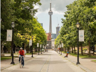 تصنيف أربع جامعات كندية بين أفضل 100 جامعة على مستوى العالم | مهاجر