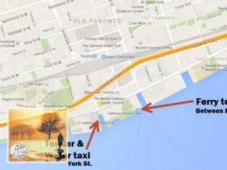 إليك جميع طرق السفر إلى جزيرة تورنتو الجميلة | مهاجر